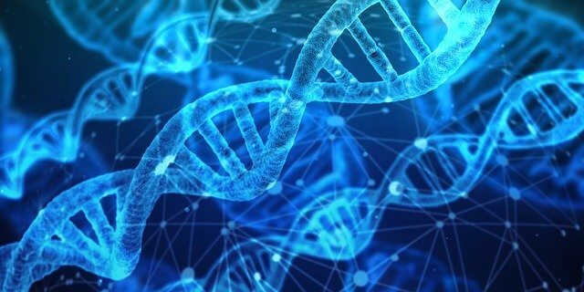 The Ethics And Legality Of DNA Genealogy To Solve Crimes