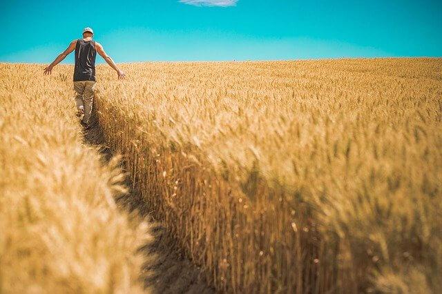 Farmers Bill, 2020