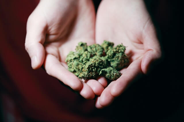 Legalizing Marijuana: A Legal Debate